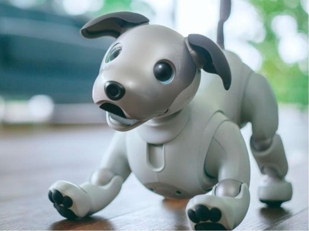 Los 6 Mejores Perros De Juguete Interactivos De 2021 Comparativa