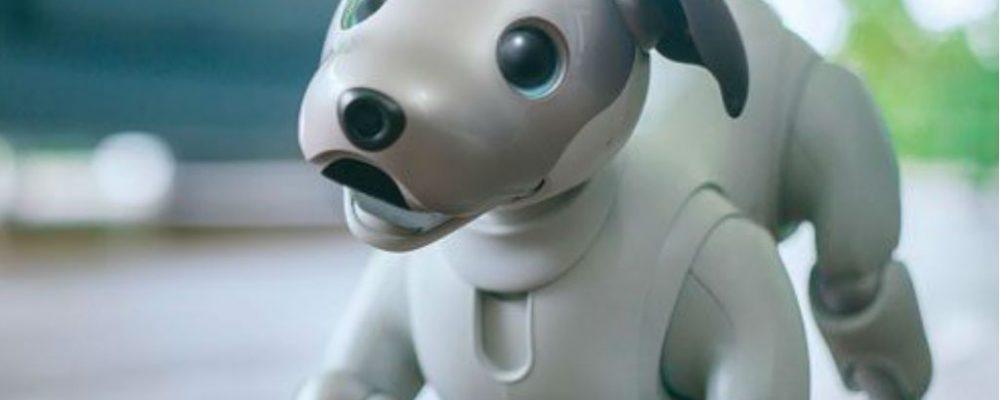 mejor-perro-de-juguete-interactivo